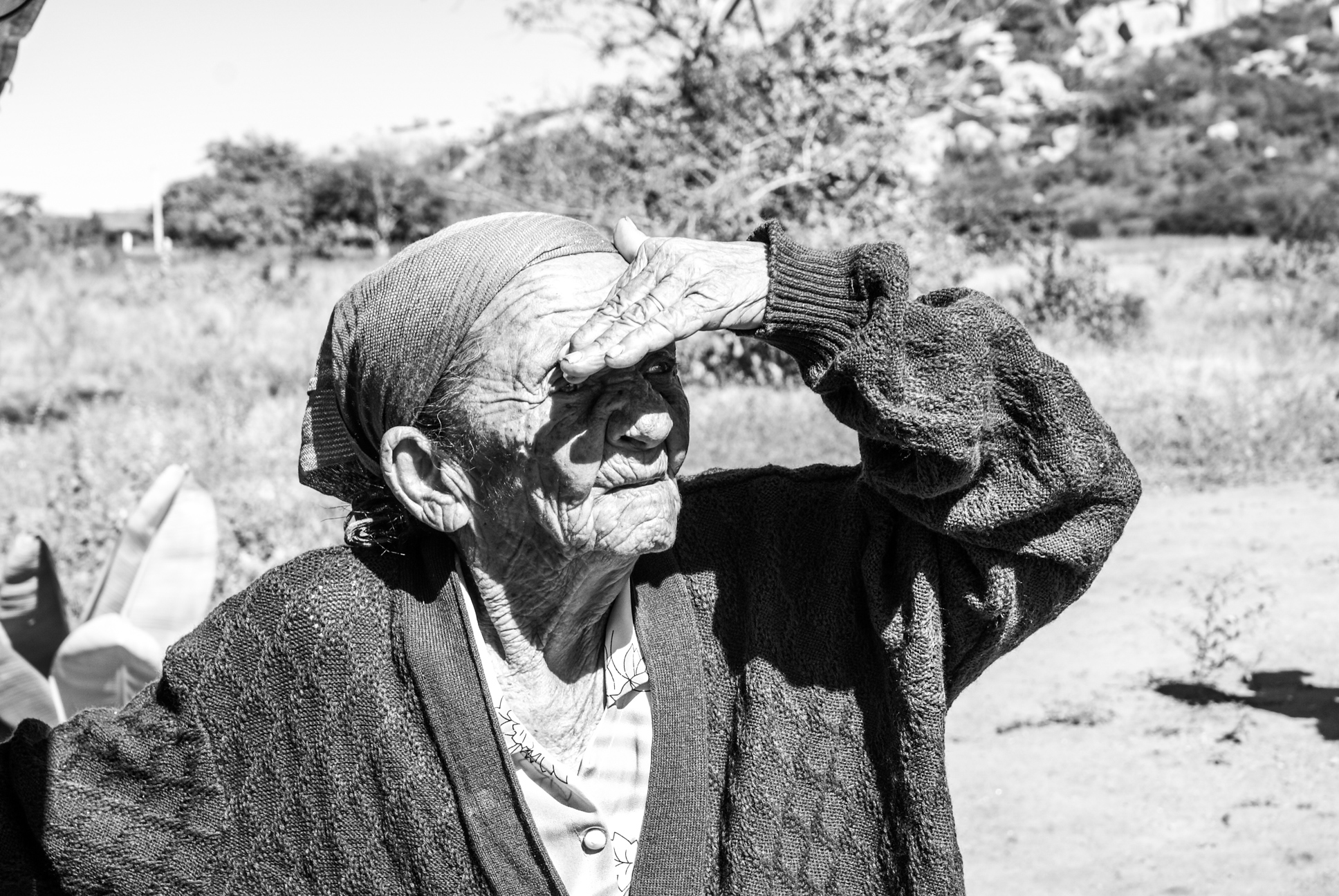 Medo de velhinhas simpáticas - Paulo Rebêlo