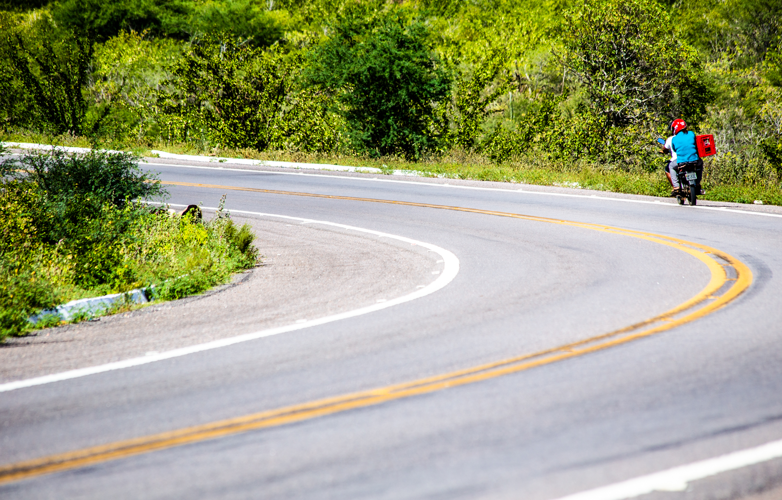 Enquanto houver estrada - Paulo Rebêlo